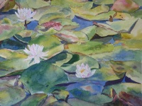 Water Lillies II