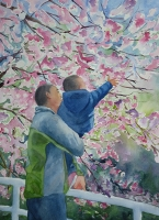 The Fascination of Cherry Blossoms
