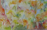 Fall Colours I