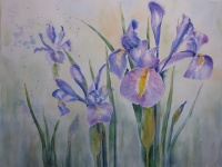 Dutch Irises (Main panel of tryptic)