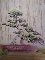 70 Year Old Bonsai